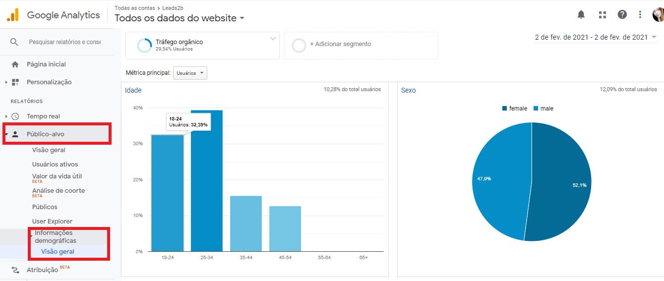 Use também o Google Analytics para extrair dados demográficos do seu público alvo, como faixa etária e sexo